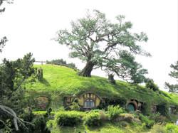 hobbiton best MM 2017-01-09 281