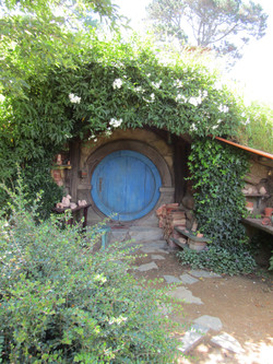 hobbiton MM 2017-01-09 193a