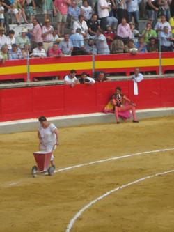 Granada Spain bullright