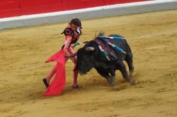 Spain Granada bullfight matador