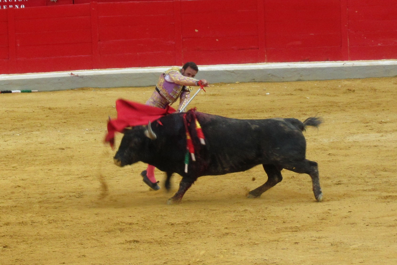 Granada bullfight Spain