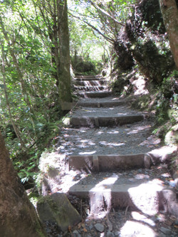 Tongariro hike last steps half km from end 2017-01-07 332