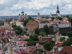 Tallinn 7.10 best  view from St. Olav tower 265