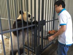 pandas WuWen greets keeper best IMG_3042