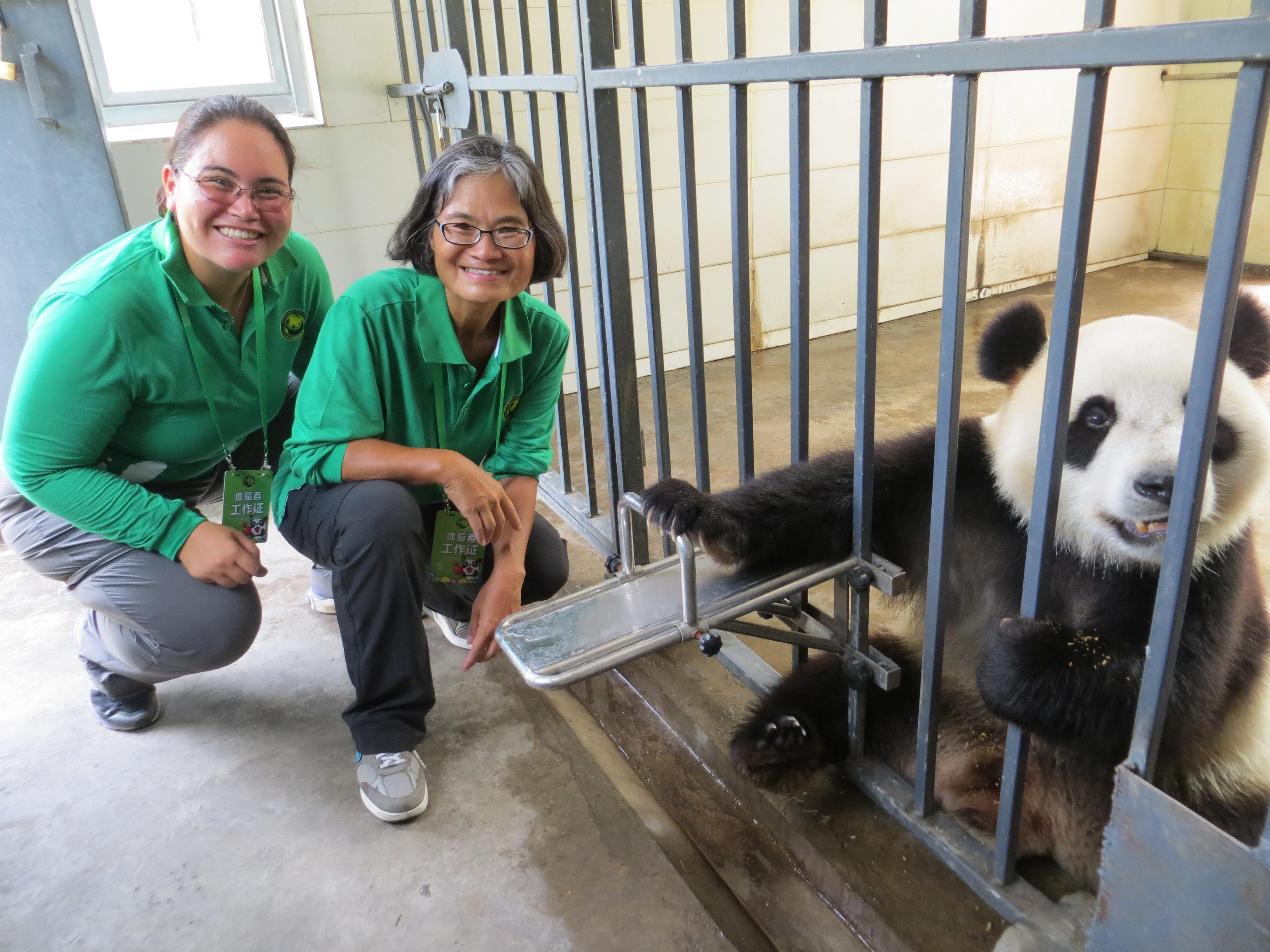 pandas BEST best with WuWen 2016-07-02 058