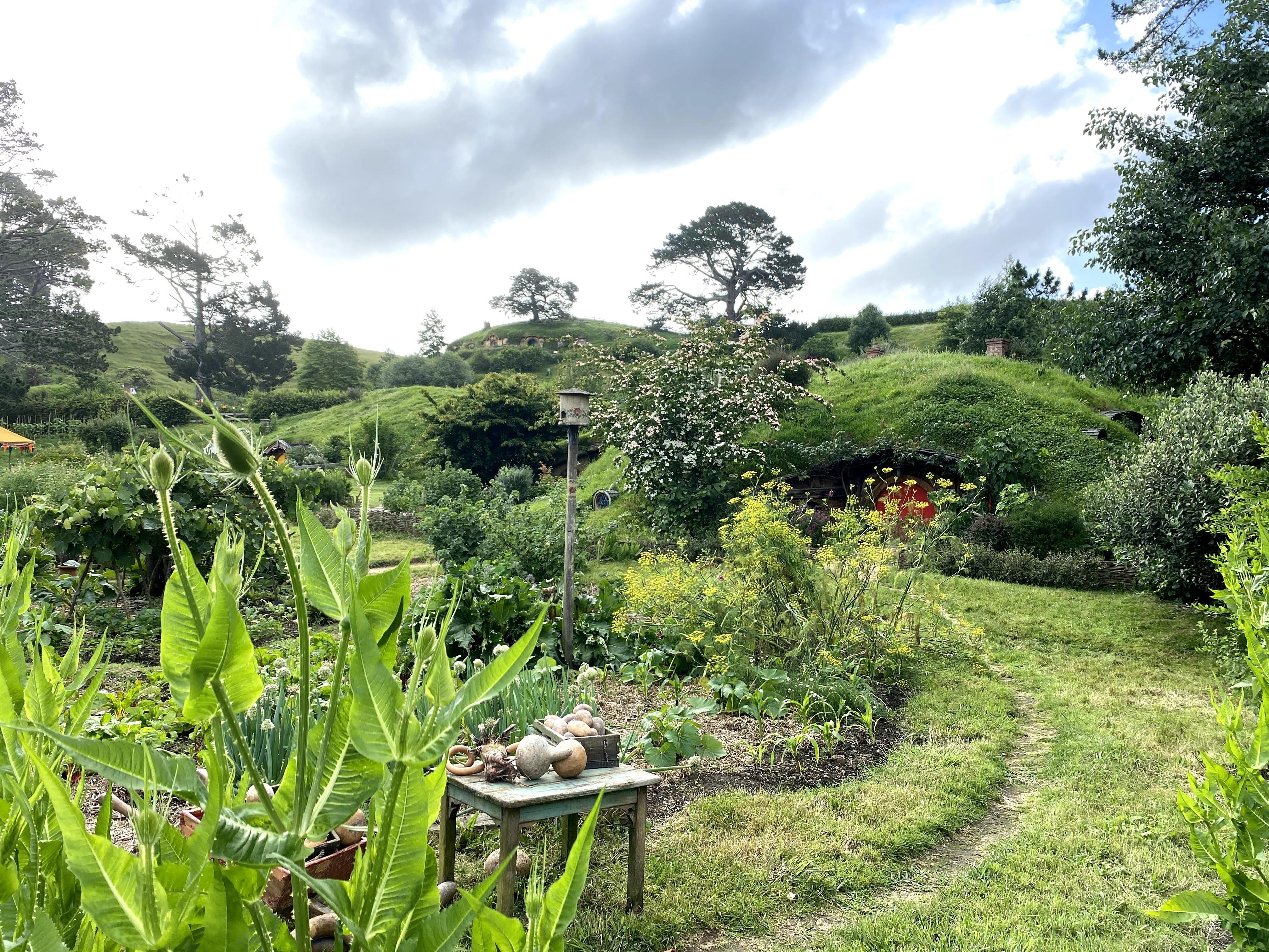 2019 Hobbiton New Zealand IMG_3105