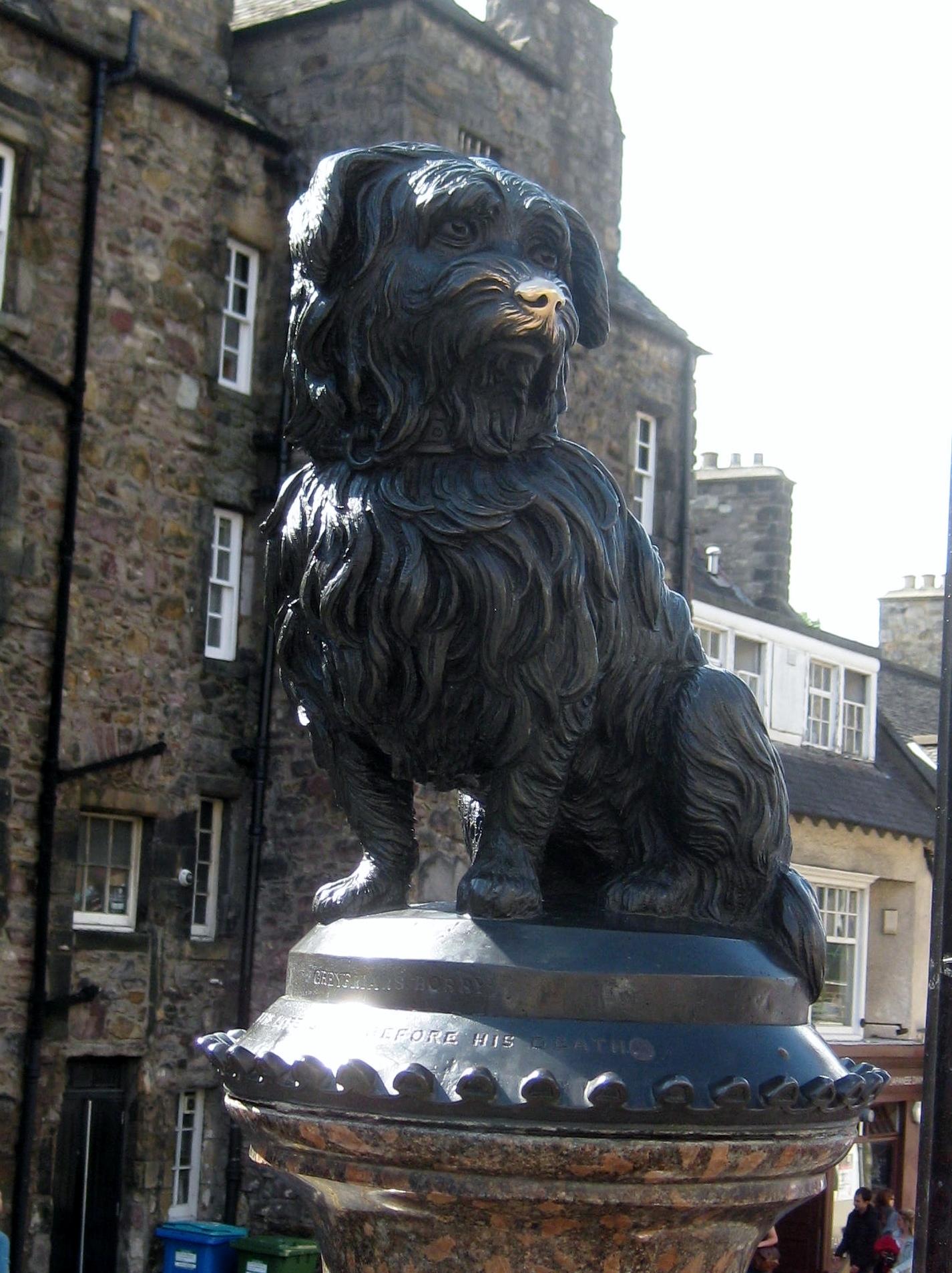 Scotland 7.4 Edinburgh Greyfriars bobby
