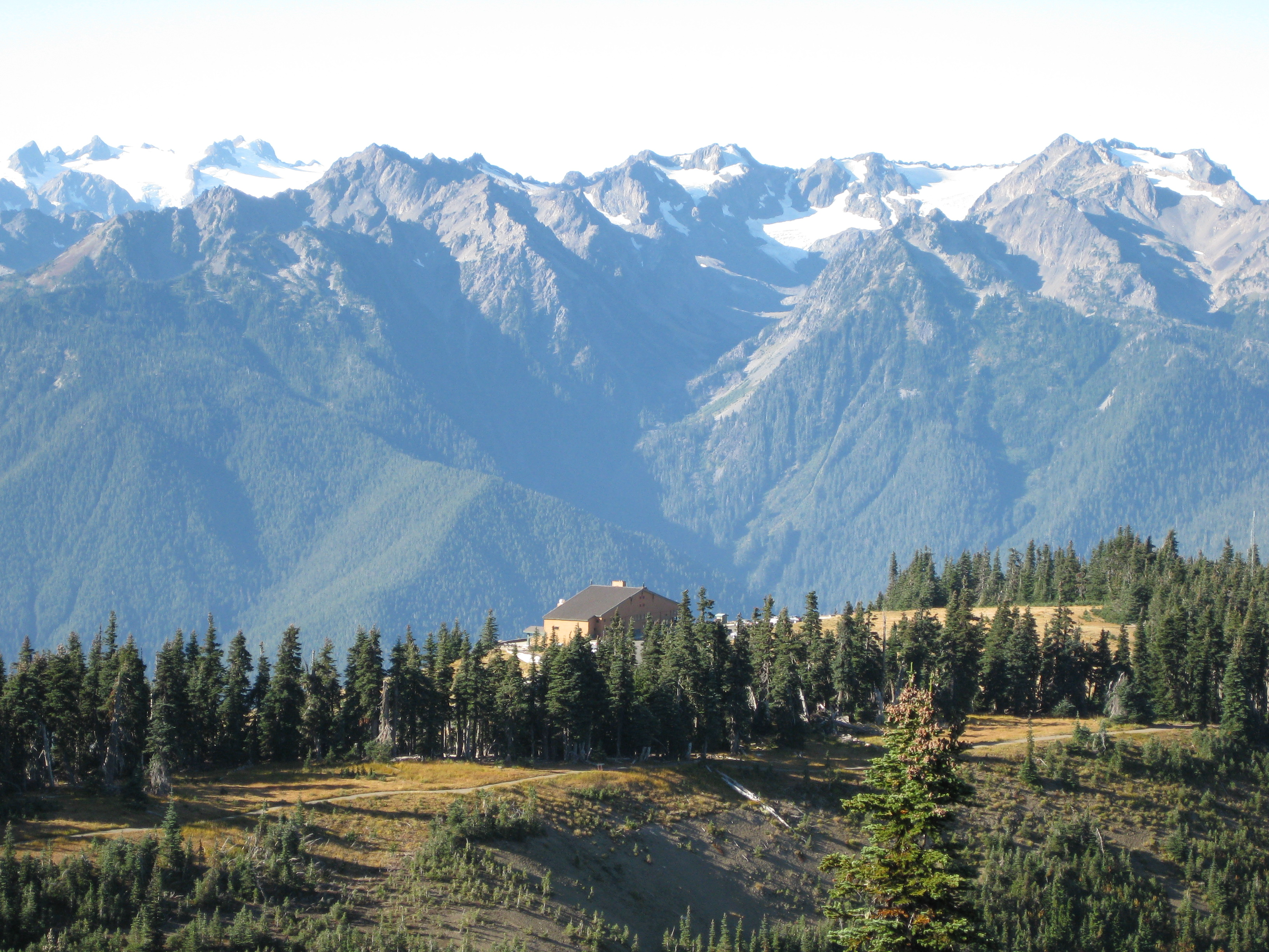 Olylmpics national park Washington