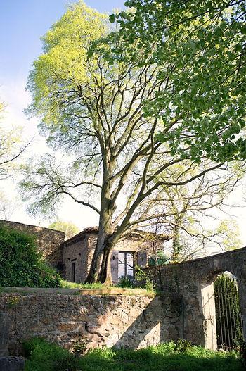 le jardin de la chambre d'hôtes La bâtie - 38200 Vienne
