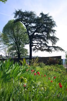Une partie du parc au début du printemps.