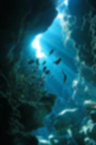drawn-cave-sea-cave-521018-9270116.jpg