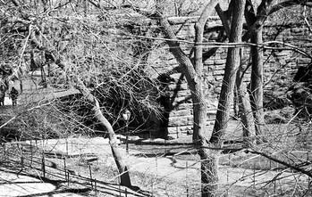 NY Central Park IV
