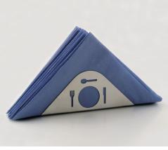 Napkin holder plate
