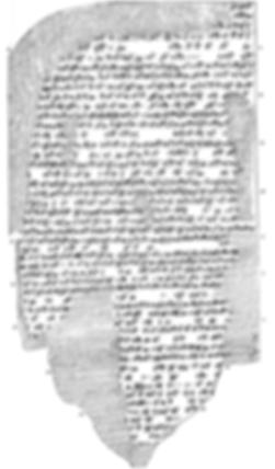corpusdeaea-VAT9555.png