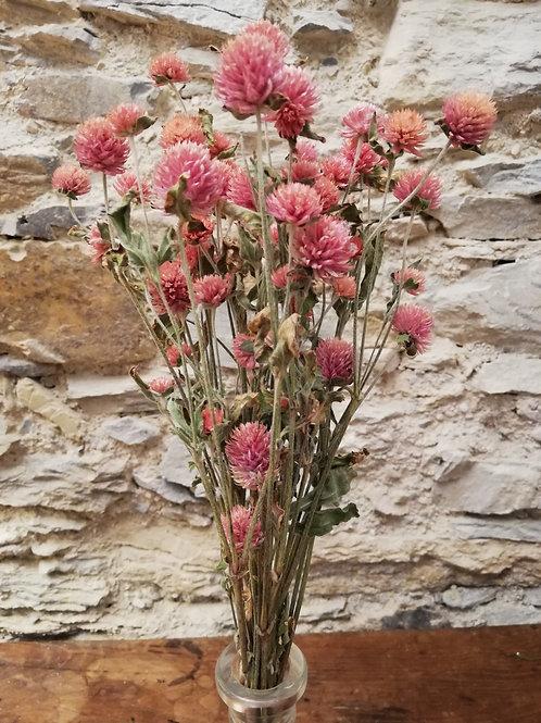 Mini bouquet Gomphrena Rose