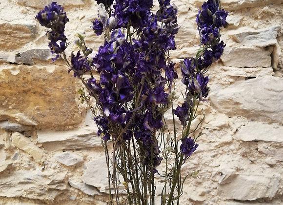 Mini bouquet Delphinium bleu
