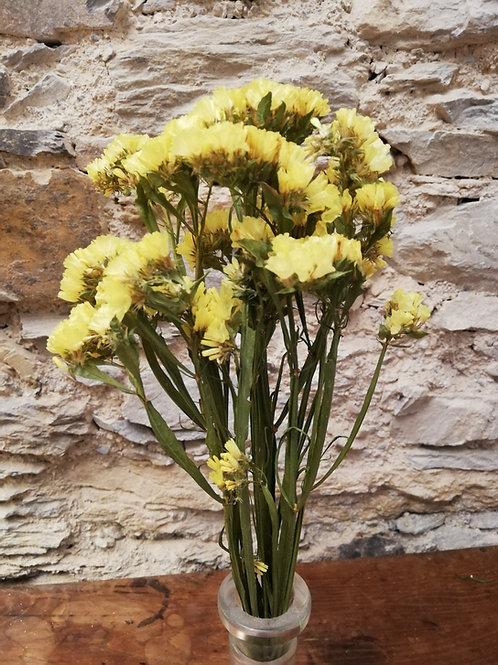 Mini bouquet Statice Jaune