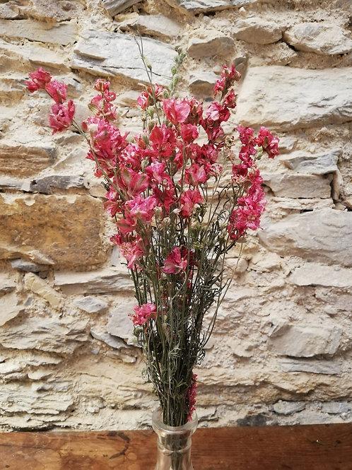 Mini bouquet Delphinium Rose
