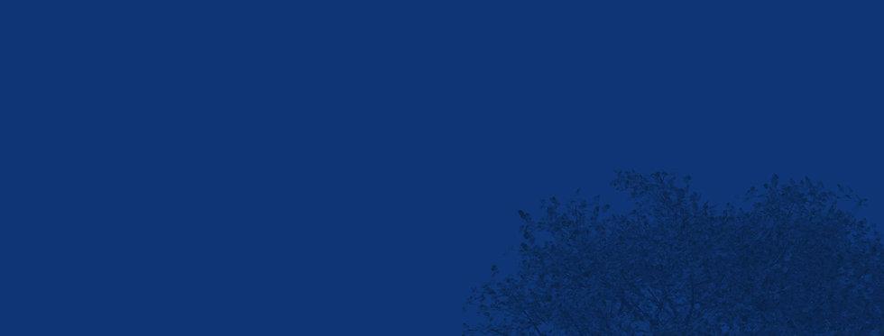 背景藍.jpg