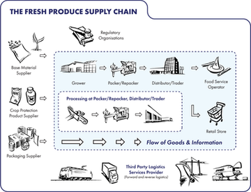 The Fresh Produce Supply Chain
