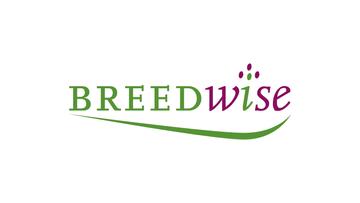 Breedwise (vanaf scratch)
