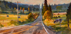 Road Home 10x20