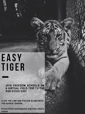 San Diego Zoo Flyer-2.jpg