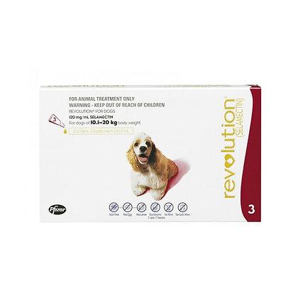 Revolution for Medium Dogs 10.1-20kg