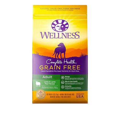 Wellness Complete Health Grain-Free Lamb & Lamb Meal Dry Dog Food