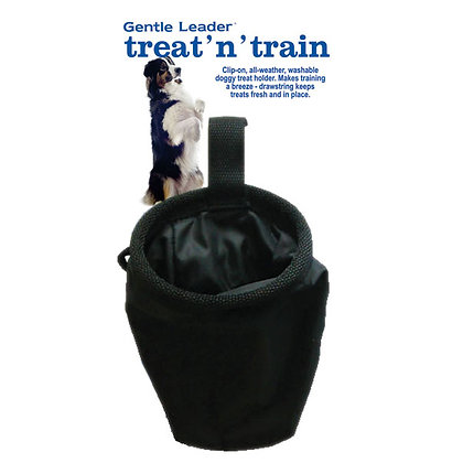 Treat & Train Bag