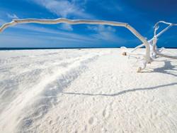 f5e0ca8663a6194cd59fd2ad76eb8e8c--white-sand-beach-the-maldives