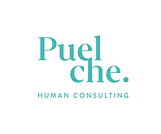 Logo%20Puelche%202020-02_edited.png