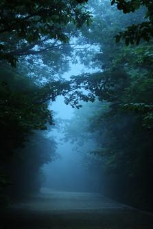 Jirisan 2001,160x107cm