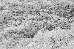 28.Seorak 1423, 107x160cm, Archival Pigm