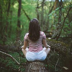 wild yoga, mediation