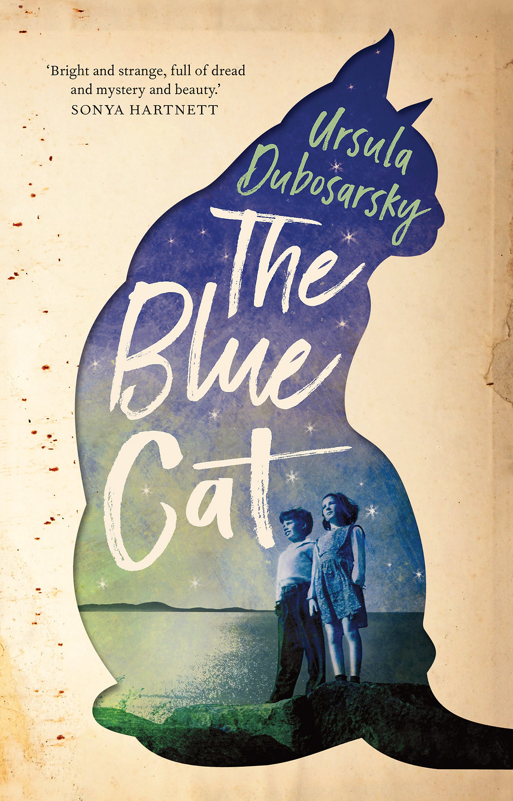 Cover of The Blue Cat
