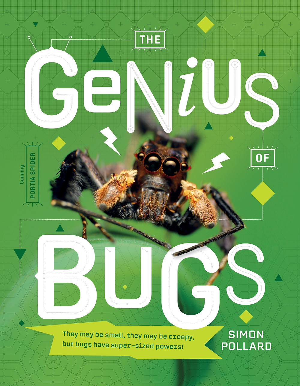 the genius of bugs