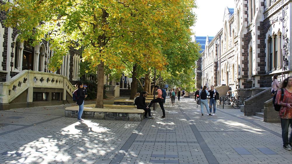 The University of Otago campus.