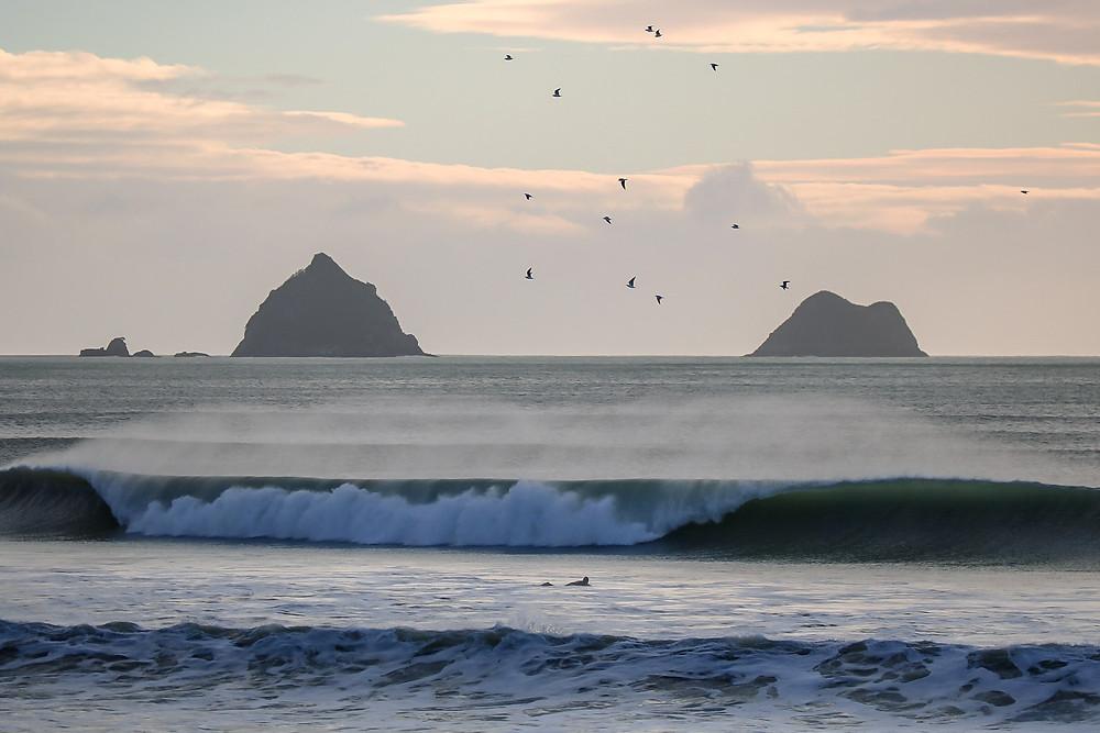 photo of surfer by  steph matuku