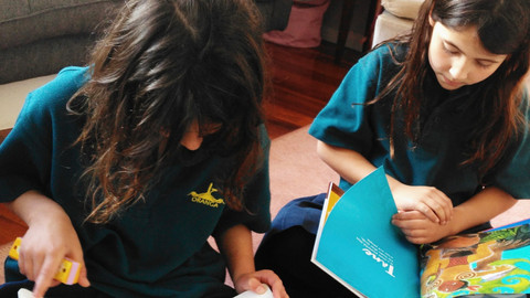 Te Reo Maori in Schools: 10 Things You Can Do