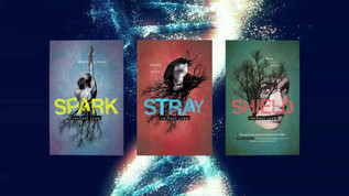 Book List: Local YA as good as the internationals