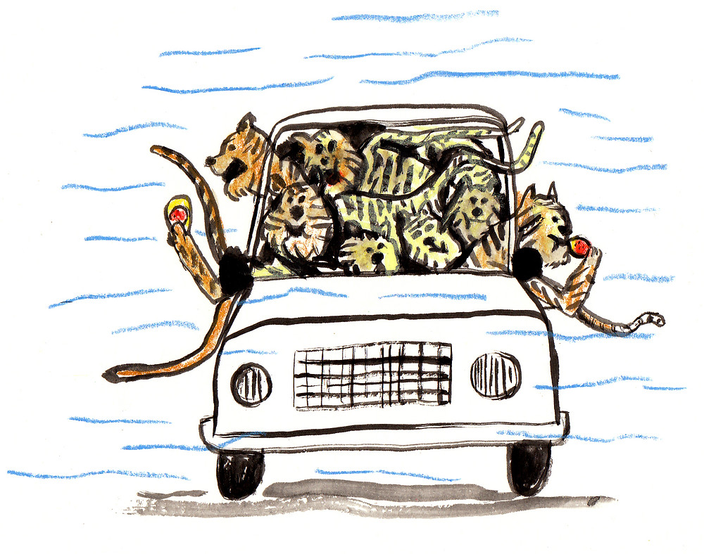 illustration from Soda pop