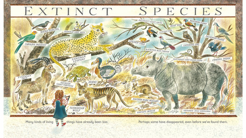 Factual books for kids from NZ and beyond