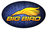 big bird png yellow.png
