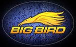 Big Bird Brush Logo
