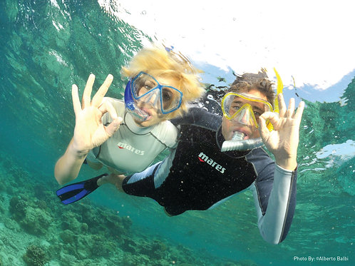 Pro-Dive Central Coast
