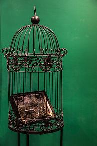 cage-display-mask-2-ArqPaulaPosser-photoMarceloDonadussi-LamantBoutiqueSensual-RetailDesig
