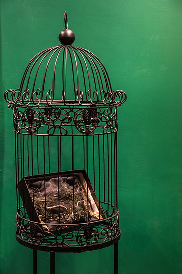 cage-display-mask-2-ArqPaulaPosser-photo