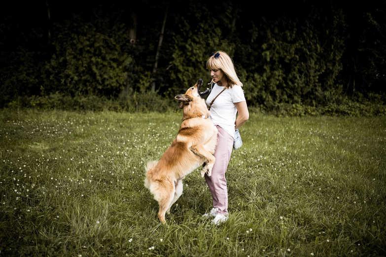 natuerlichhund-sandra-vergien-2A6A2233.j