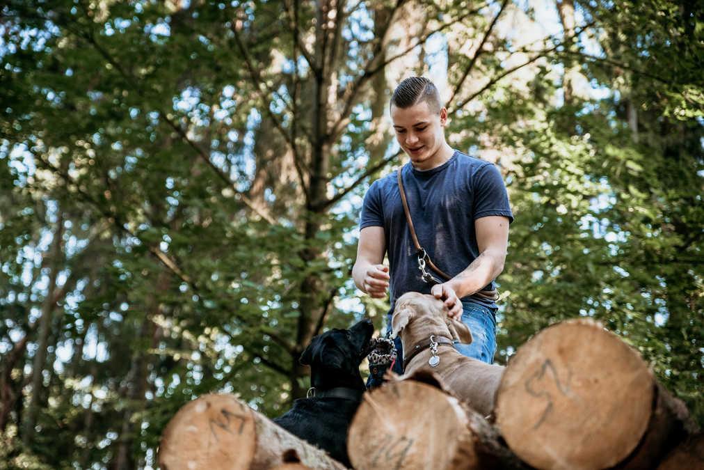 Wald-Mann-Hunde-Fotografie